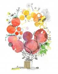 fruits 1.jpg
