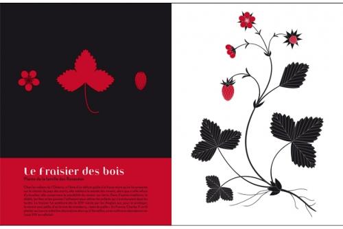 Herbiers_exposition-14-d8223.jpg