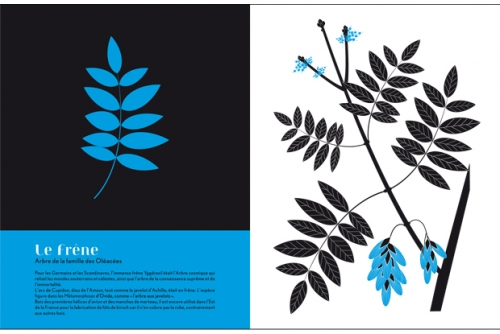 Herbiers_exposition-7-f7926.jpg