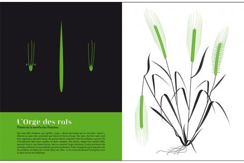 Herbiers_exposition-16-d1377.jpg